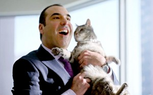 Suits: Nigel's Cat